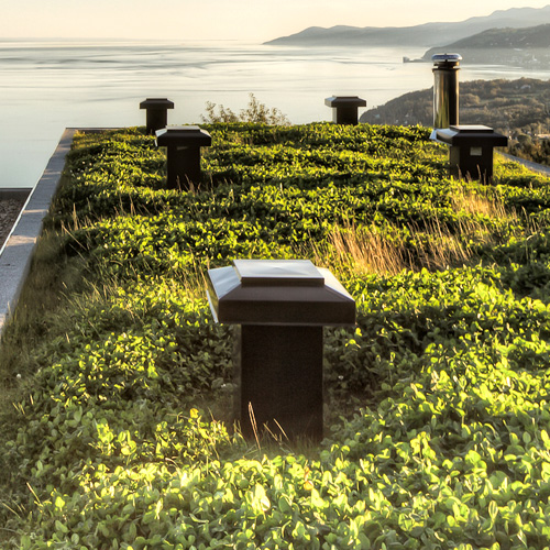 Réalisation de toiture végétale ou toit vert